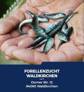 Forellenzucht Waldkirchen